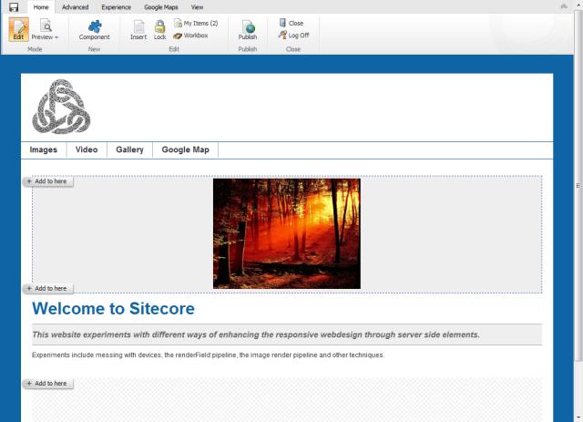 Sitecore Page Editor